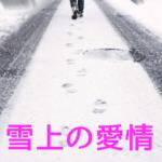 雪上の愛情